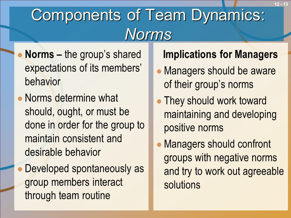 Components of Team Dynamics: Norms