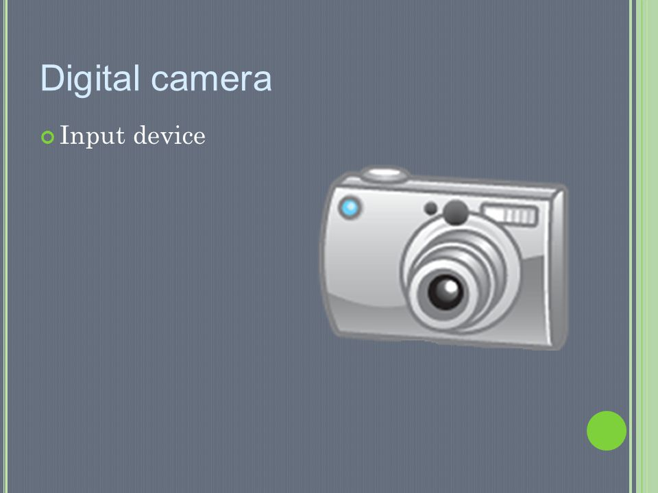 Digital camera Input device