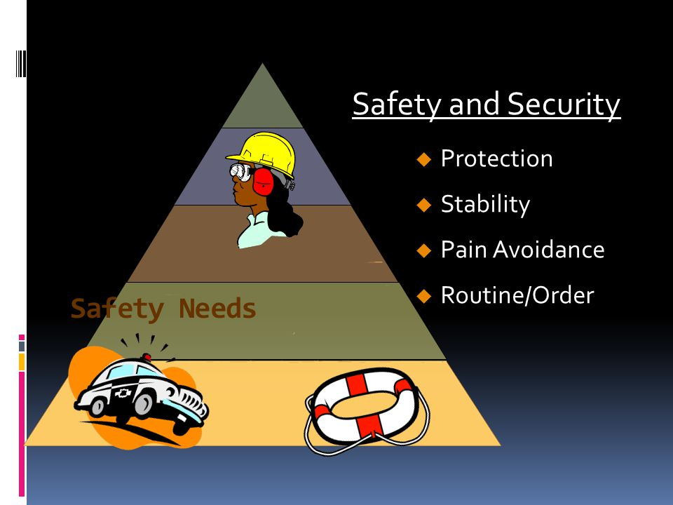 Safety Needs Protection Stability Pain Avoidance Routine/Order