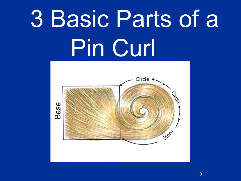 Hairstyling Chapter Ppt Video Online Download