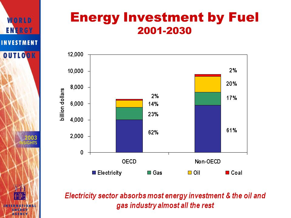 Energy Investment by Fuel