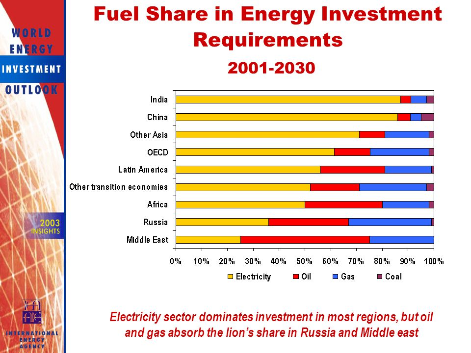 Fuel Share in Energy Investment Requirements