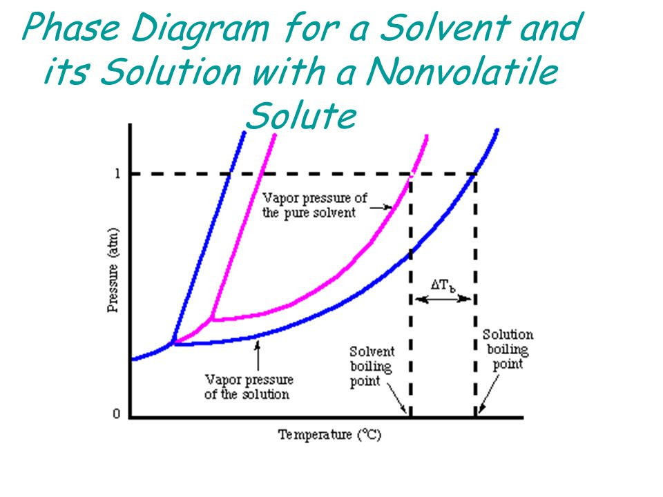 solutions solutions are homogeneous mixtures of two or more pure substances  in a solution  the