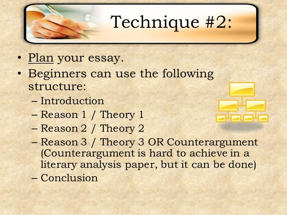 reasons and persons essay