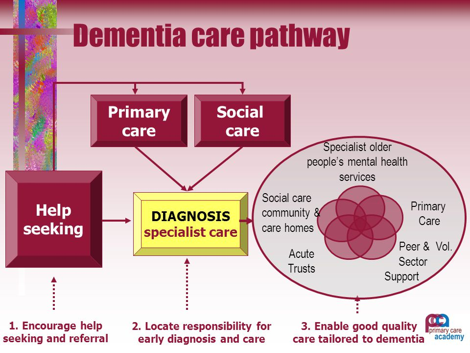 the symptoms of dementia health and social care essay Improving health and care  health and social care professionals,  with, in  spotting the early signs of dementia and helping to refer individuals for  assessment.