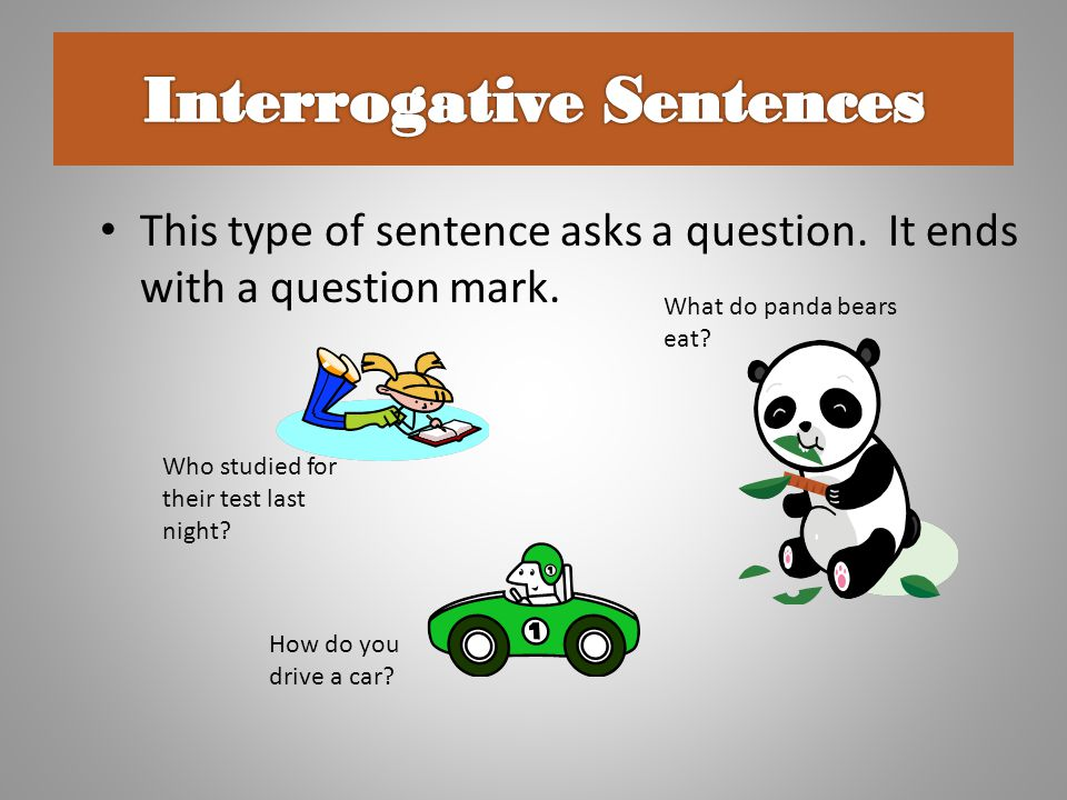 Interrogative Sentences