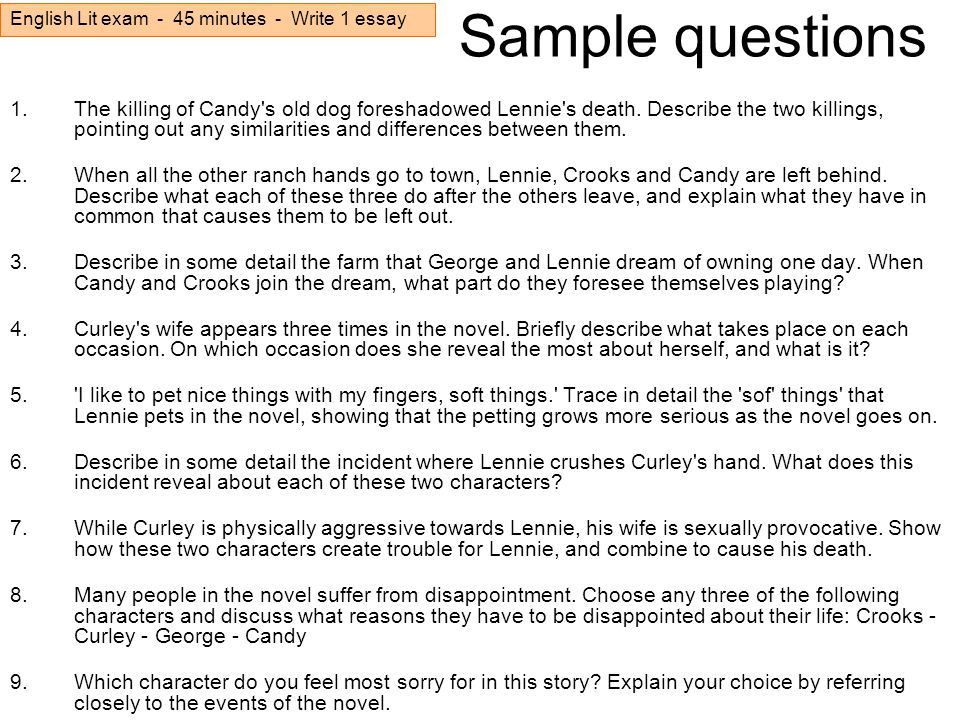 relationship between lennie and curlys wife essay format