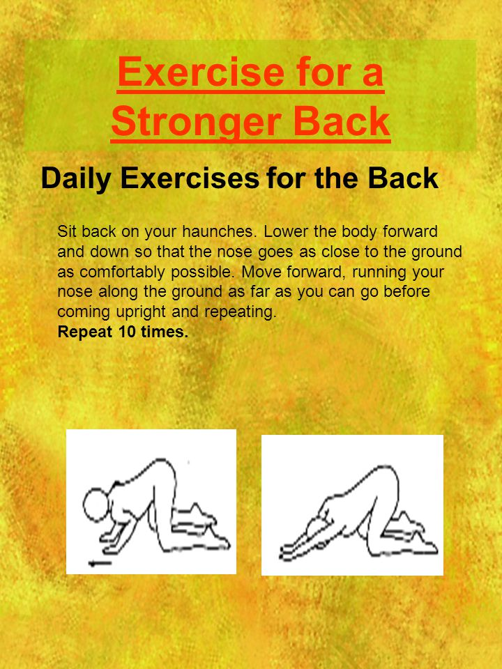 Exercise for a Stronger Back