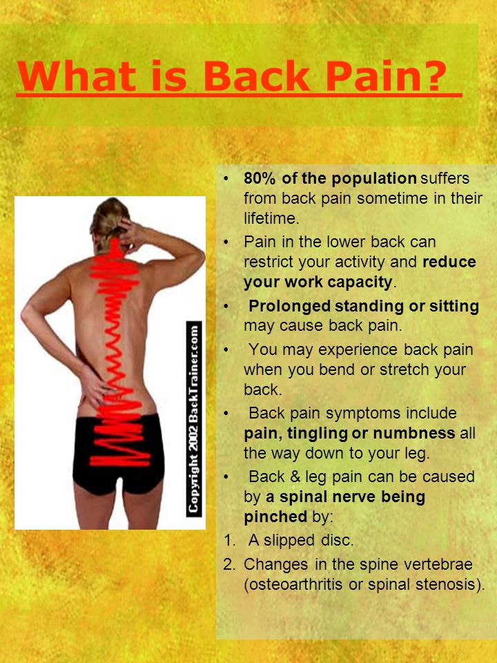 What is Back Pain 80% of the population suffers from back pain sometime in their lifetime.