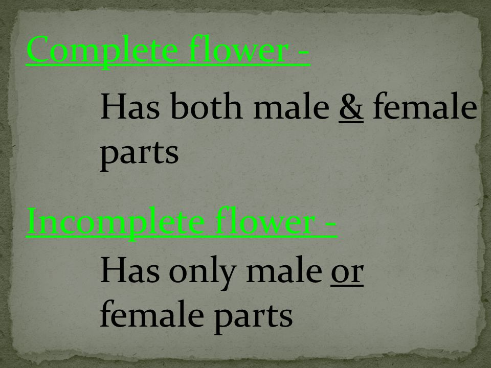 Complete flower - Has both male & female parts Incomplete flower - Has only male or female parts