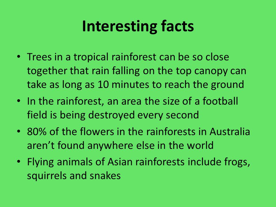 the importance of rain forests Rainforests are undergoing severe deforestation and fragmentation  the  mesoamerican region is among the most important tropical.