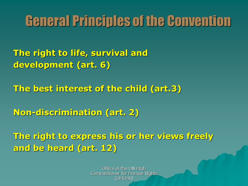 General Principles of the Convention