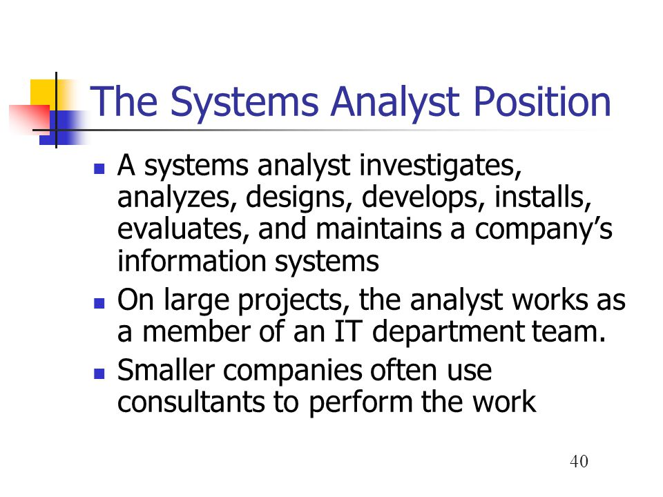 The Systems Analyst Position