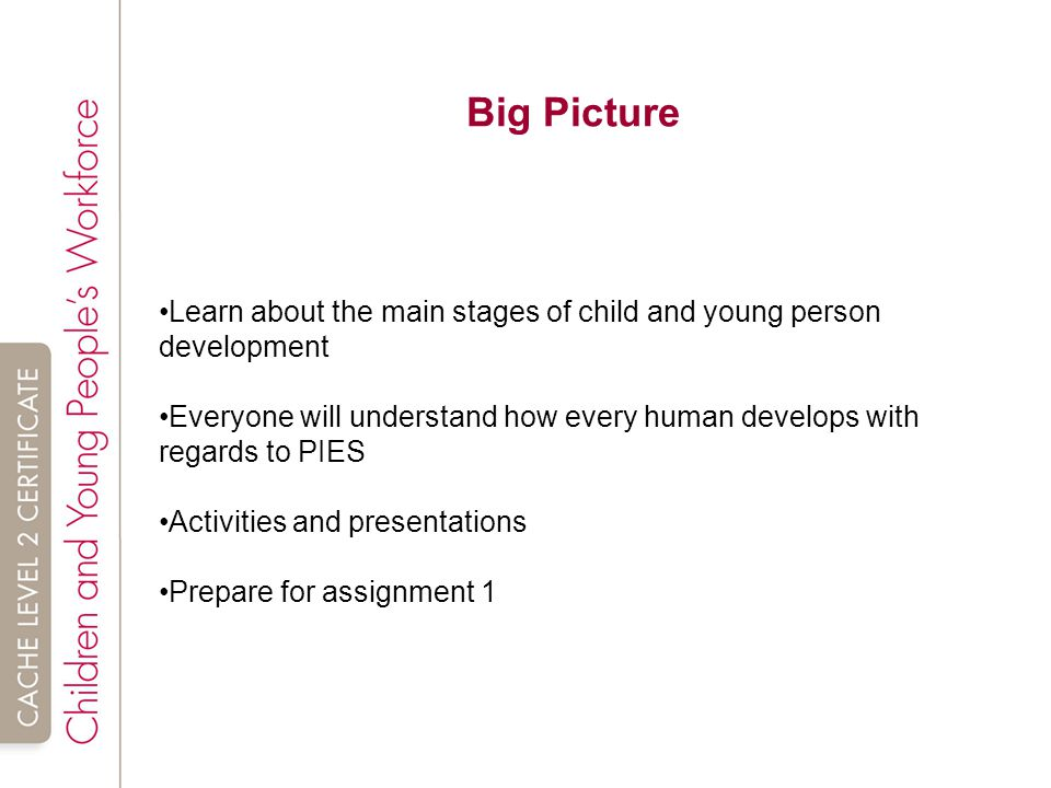 main stages of child and young person development essay