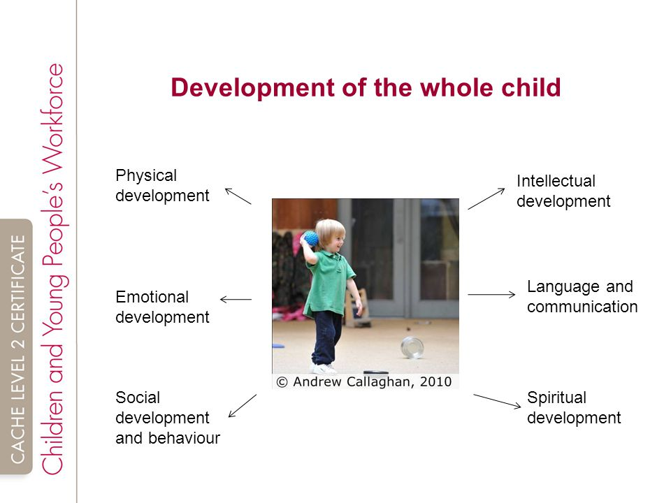 2 1 child and young person development Child and young person development an introduction learning outcomes for the  unit:  activity 2 in preparation for task 1, research communication and the.