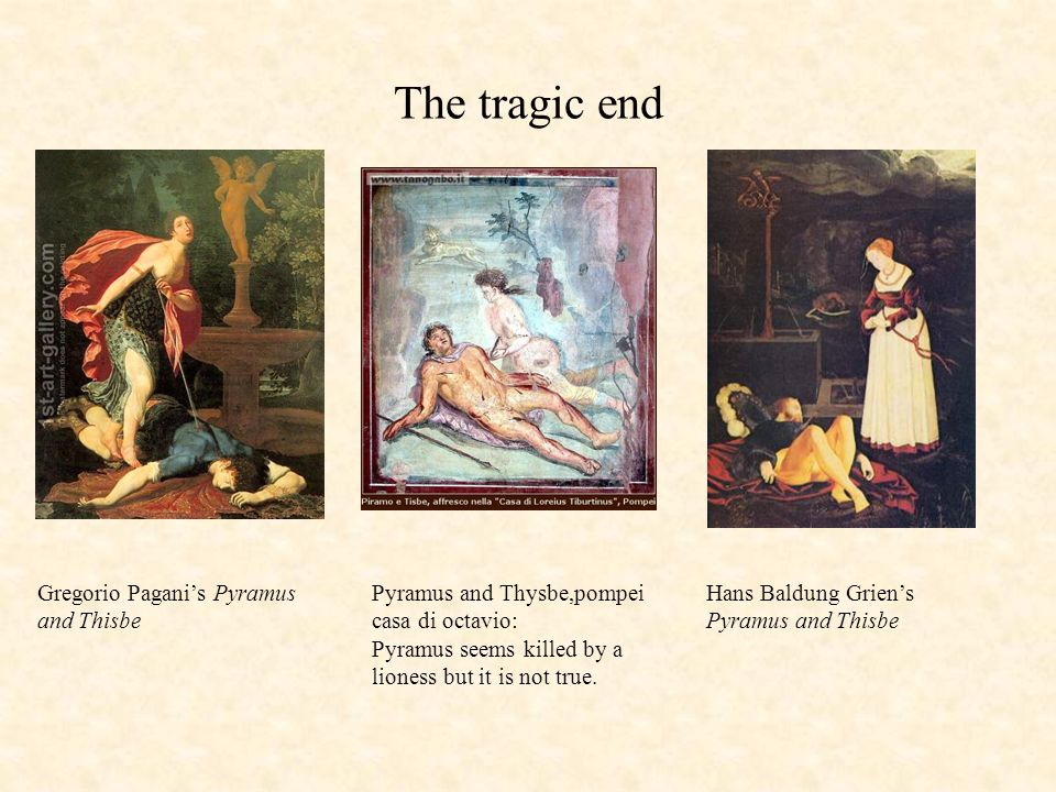The tragic end Gregorio Pagani's Pyramus and Thisbe