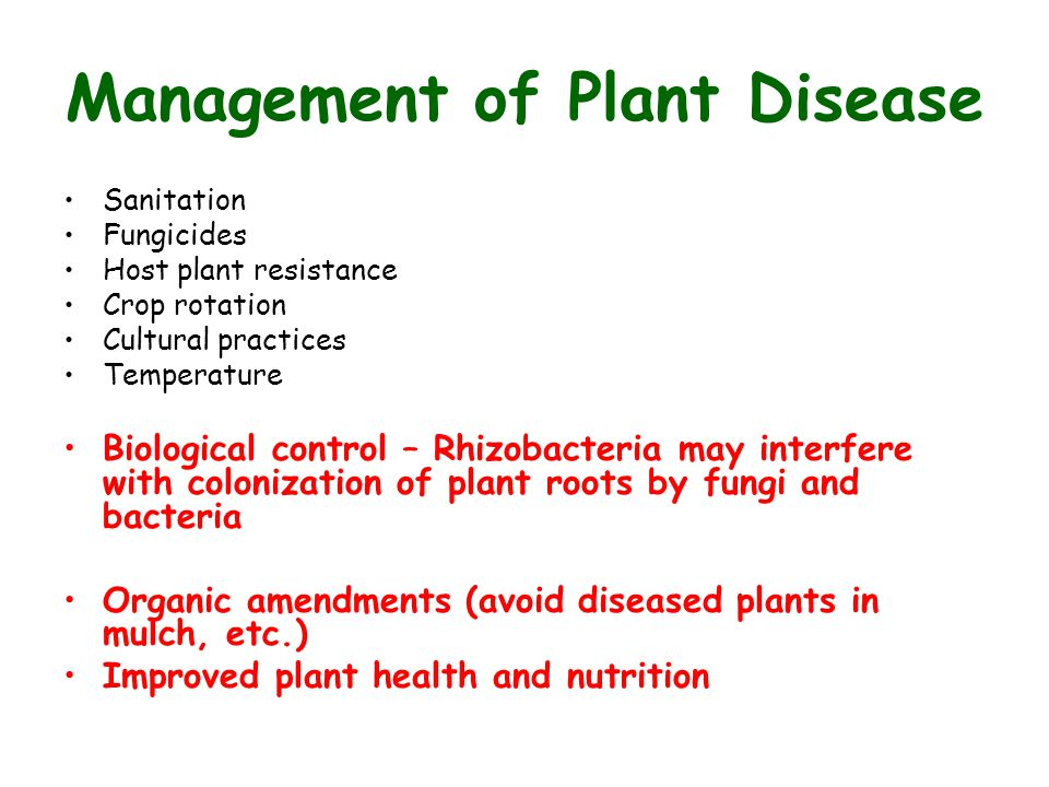 Introduction To Plant Pathology Ppt Video Online Download