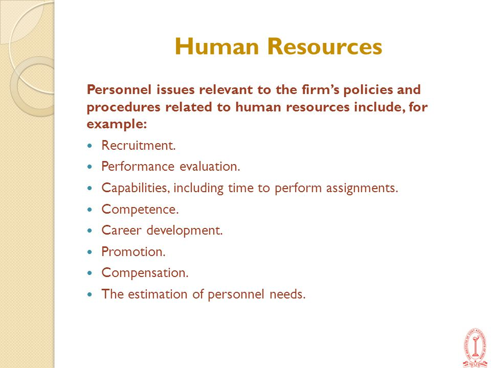 Human Resources Personnel issues relevant to the firm's policies and procedures related to human resources include, for example: