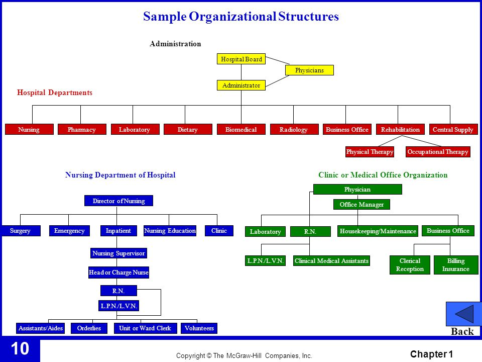 Sample Organizational Structures