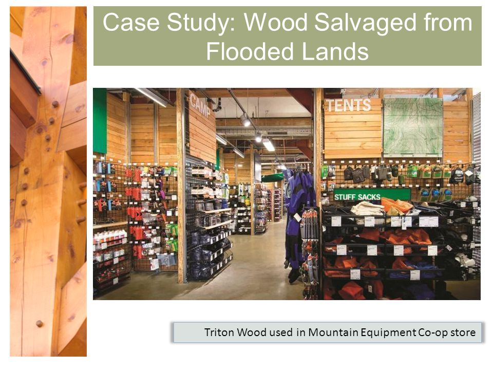 Green Mountain Resort Case Study
