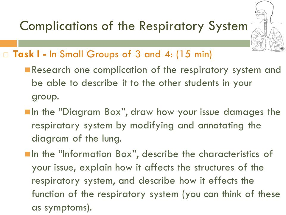 Bio 9b wednesday title patterns in nature biomimicry and the complications of the respiratory system ccuart Choice Image
