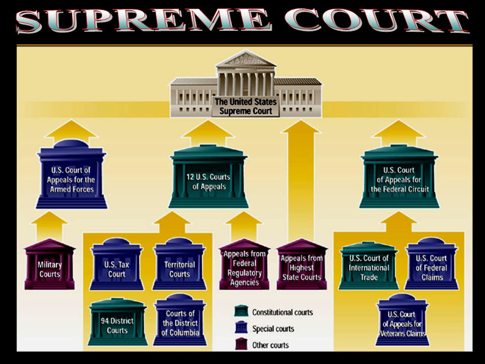 SUPREME COURT Nevada Supreme Court chart