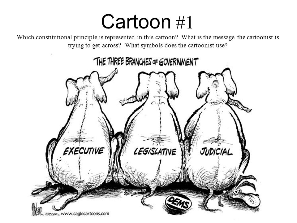 Cartoon #1 Which constitutional principle is represented in this cartoon What is the message the cartoonist is trying to get across What symbols does the cartoonist use