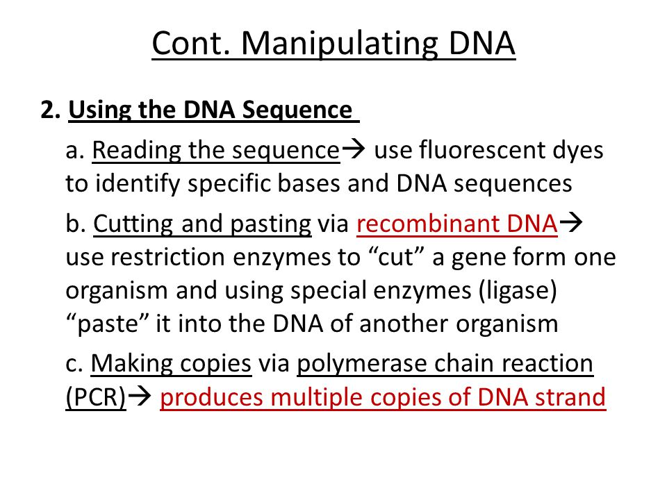 Cont. Manipulating DNA 2. Using the DNA Sequence