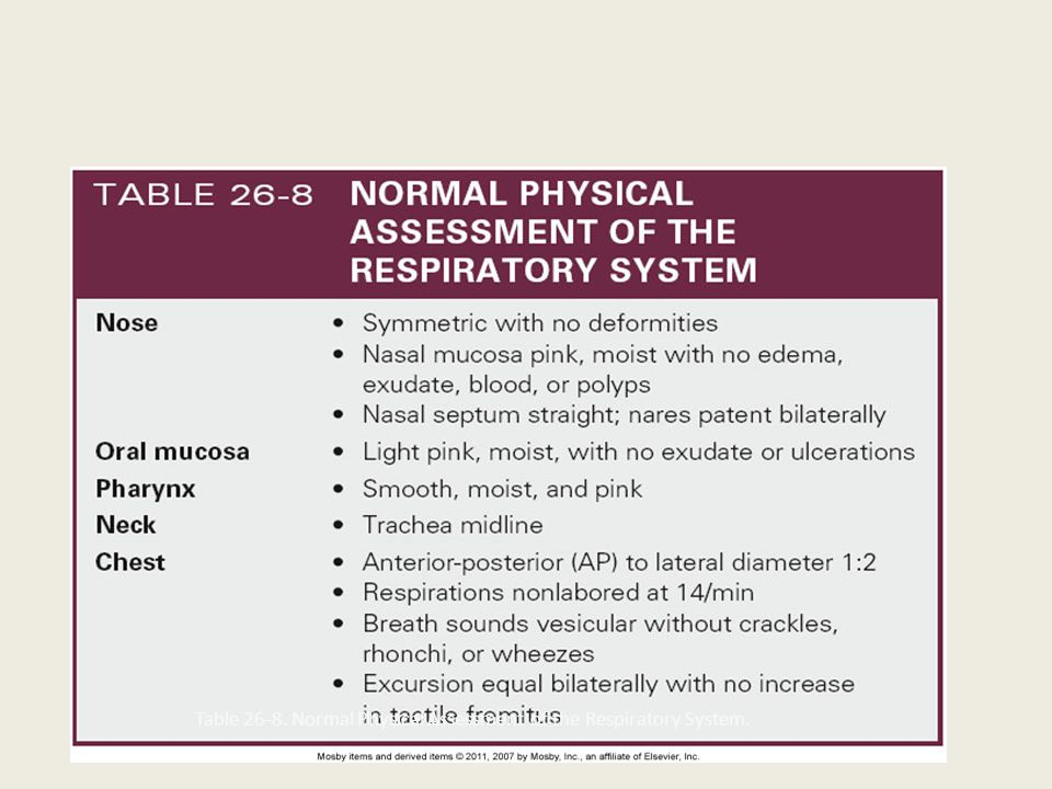 chapter 26 nursing assessment respiratory system Chapter 19 health assessment frameworks:  pathophysiology related to the  respiratory system  chapter 26 nursing care of an individual.