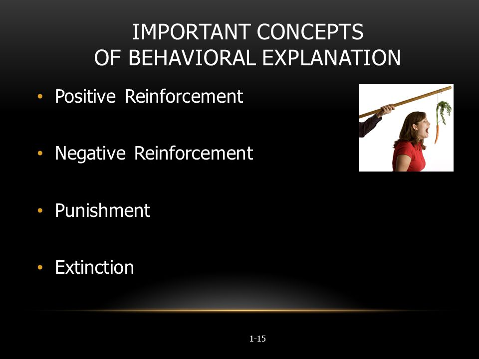 behavioral explanation Defining behavior created by sara c bicard mrs banks when trying to create a behavioral definition arrgetehgvioplcminlvtoervl 6: defining behavior.