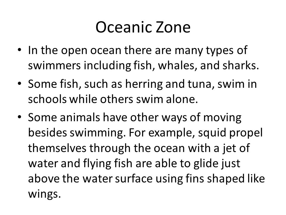 Oceanic Zone In the open ocean there are many types of swimmers including fish, whales, and sharks.