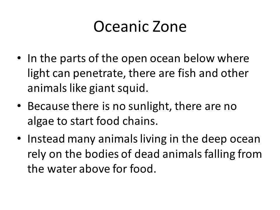 Oceanic Zone In the parts of the open ocean below where light can penetrate, there are fish and other animals like giant squid.