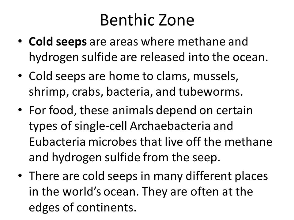 Benthic Zone Cold seeps are areas where methane and hydrogen sulfide are released into the ocean.