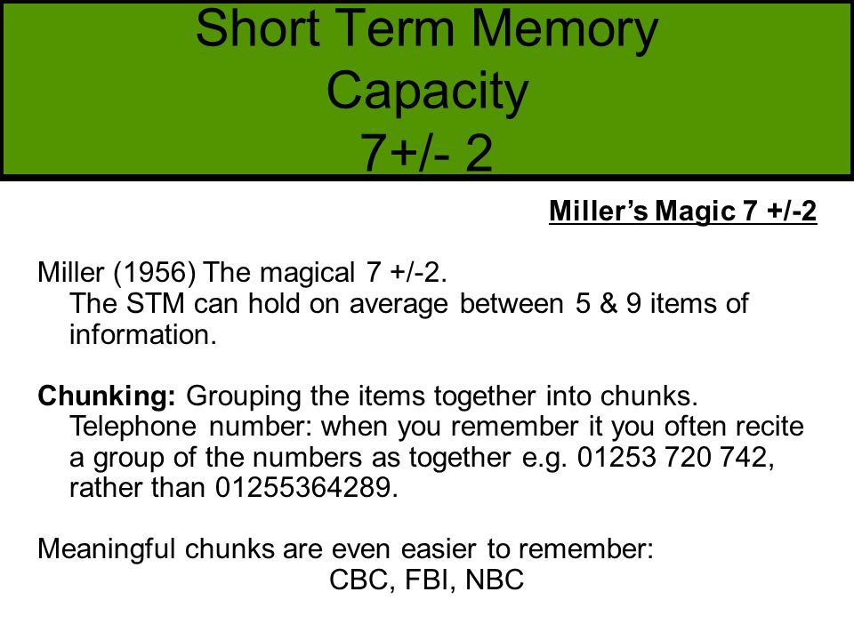 capacity of short term memory pdf