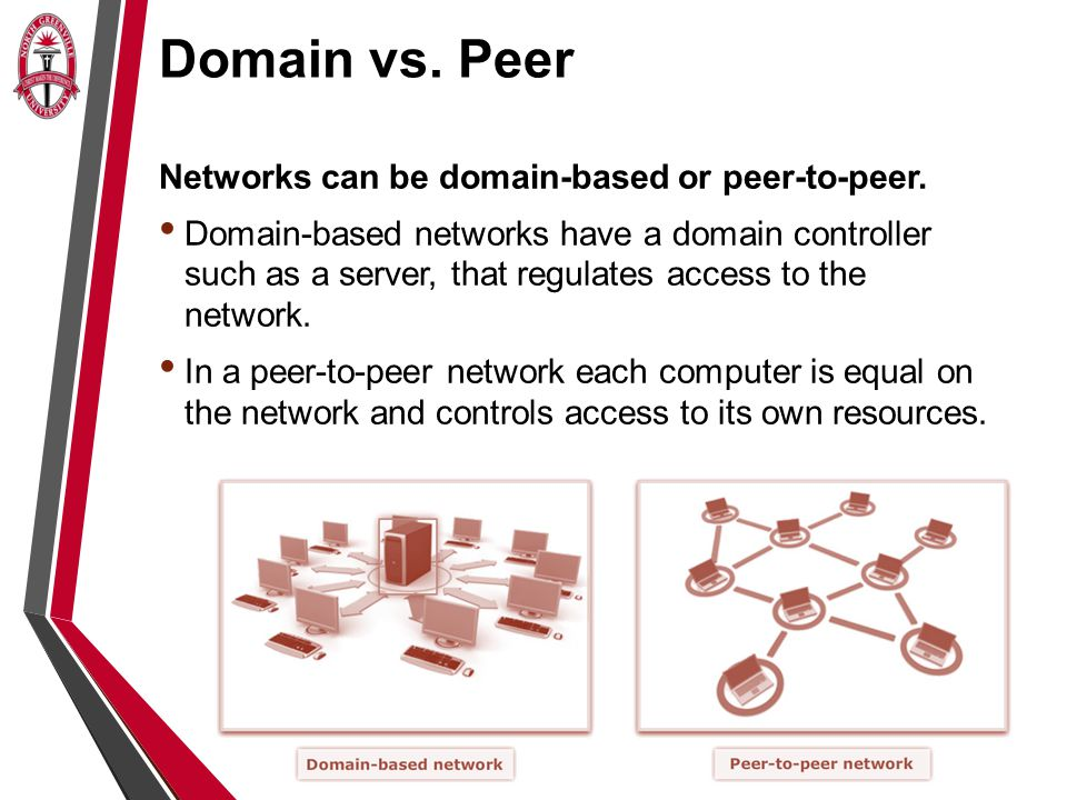 Introduction to Networks - ppt download