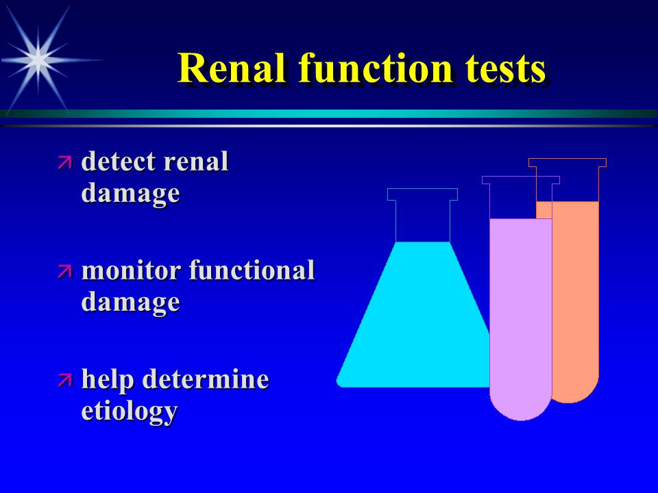 Renal Function Basic Data For Students And Residents