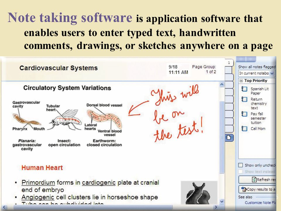 Note taking software is application software that enables users to enter typed text, handwritten comments, drawings, or sketches anywhere on a page