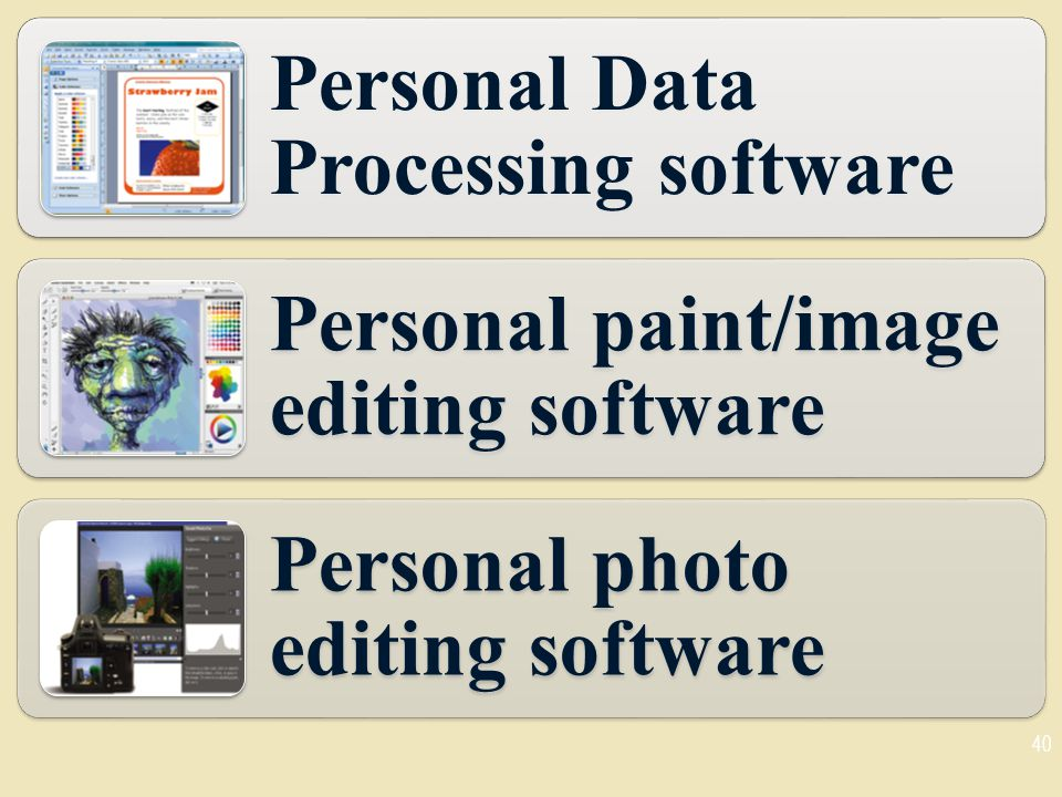 Personal Data Processing software