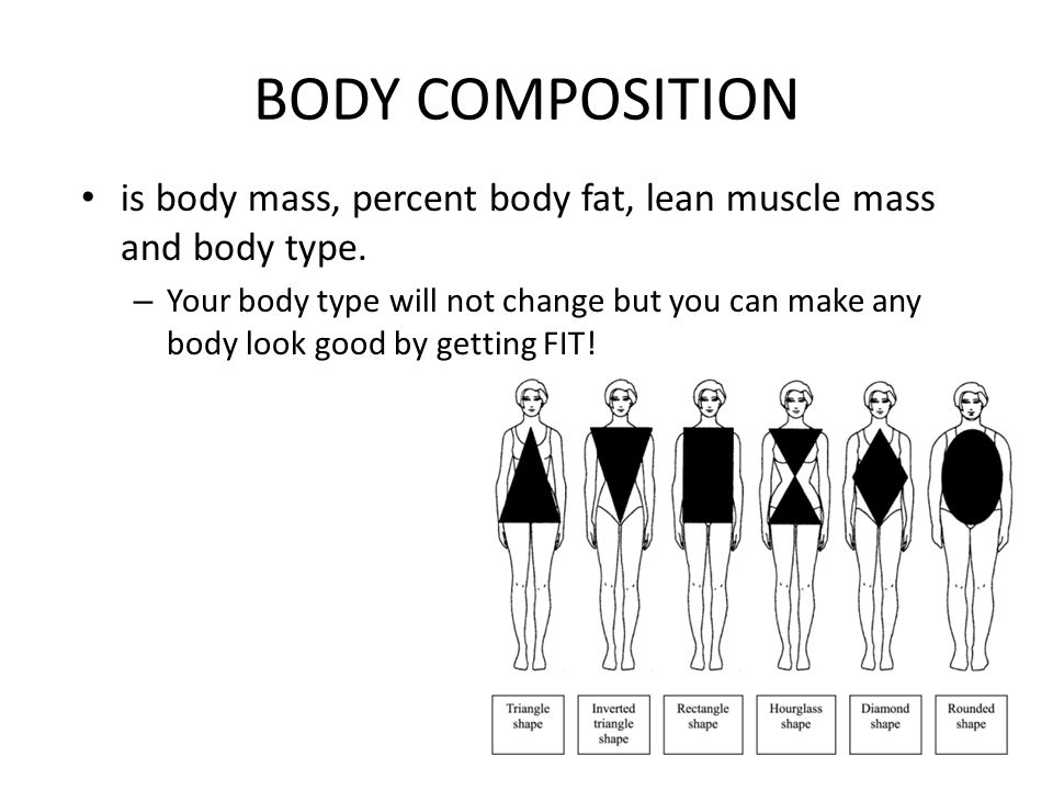 BODY COMPOSITION is body mass, percent body fat, lean muscle mass and body type.