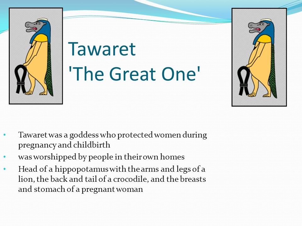 Tawaret The Great One Tawaret was a goddess who protected women during pregnancy and childbirth.
