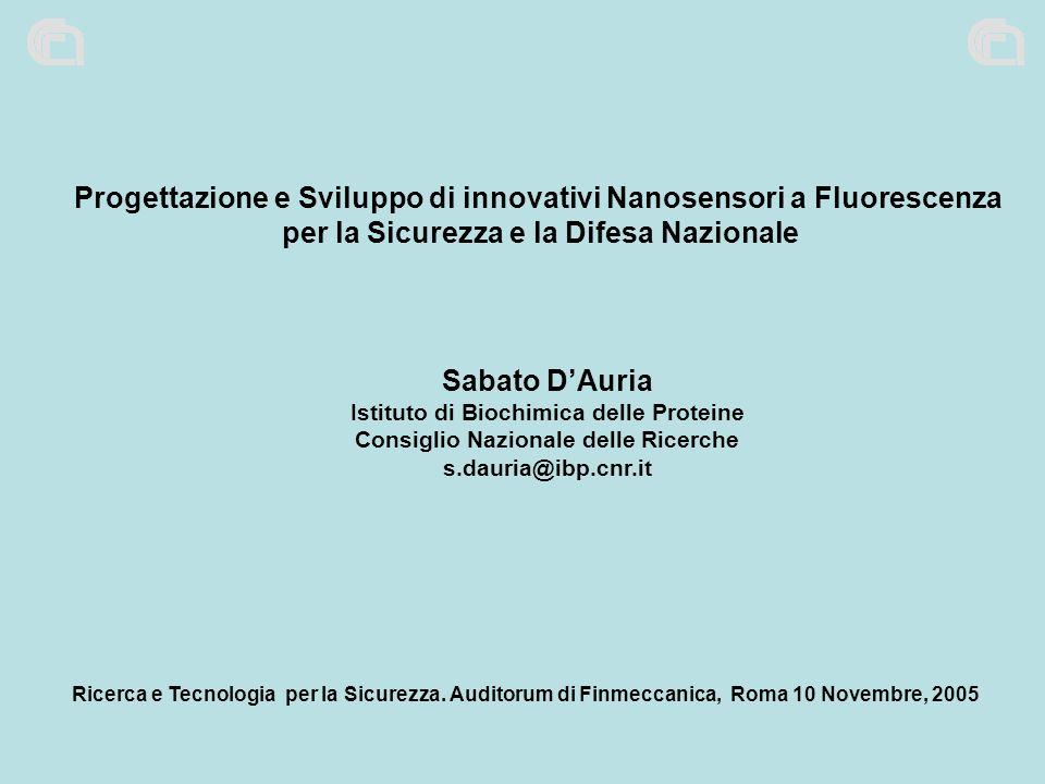 Progettazione e Sviluppo di innovativi Nanosensori a Fluorescenza