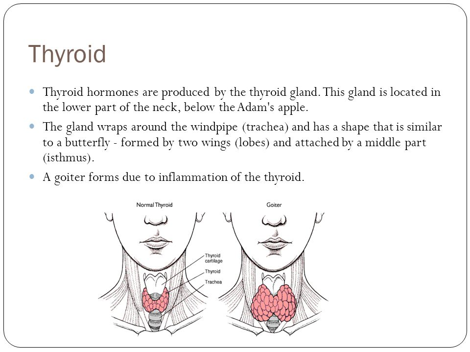 Thyroid Thyroid hormones are produced by the thyroid gland. This gland is located in the lower part of the neck, below the Adam s apple.