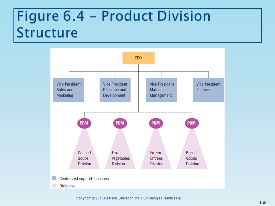 Figure 6.4 - Product Division Structure