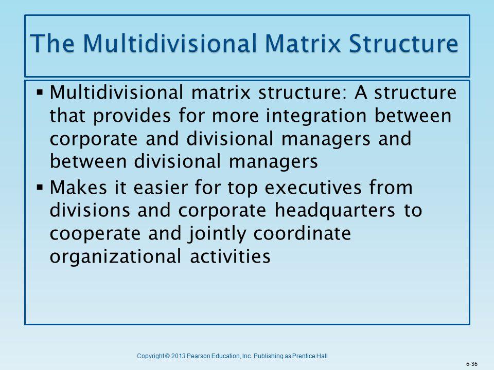 The Multidivisional Matrix Structure