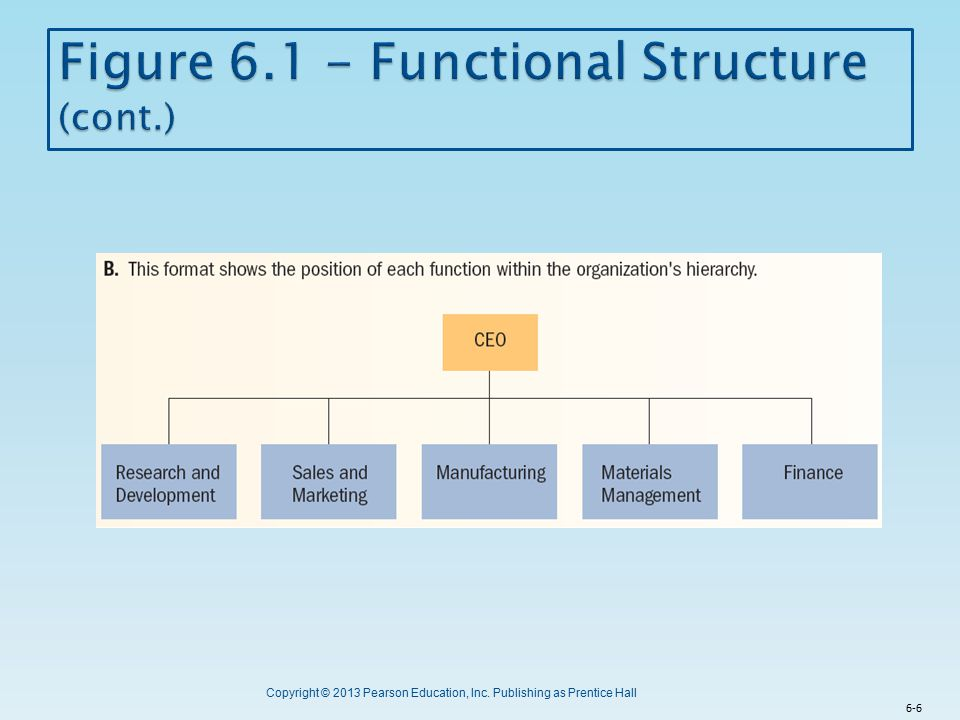 Figure 6.1 - Functional Structure (cont.)