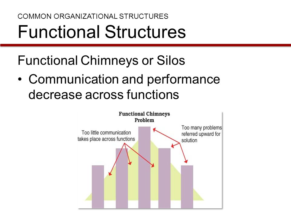 COMMON ORGANIZATIONAL STRUCTURES Functional Structures