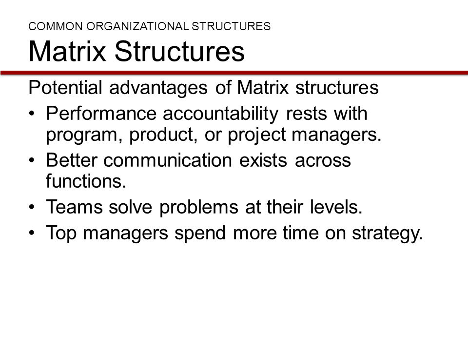 COMMON ORGANIZATIONAL STRUCTURES Matrix Structures