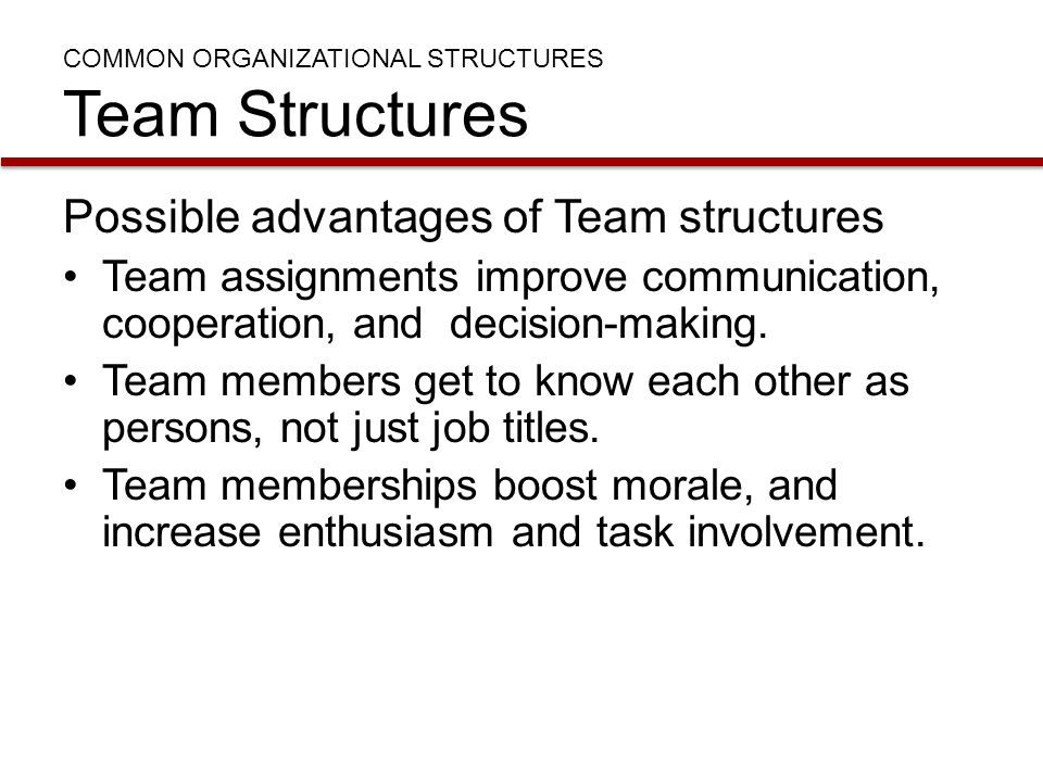 COMMON ORGANIZATIONAL STRUCTURES Team Structures