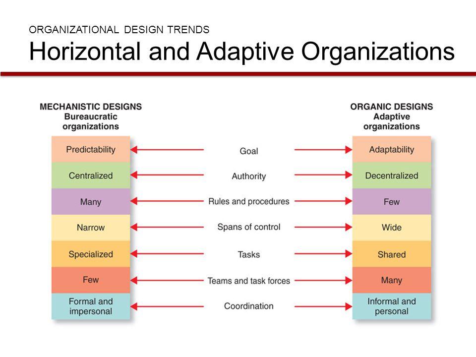 ORGANIZATIONAL DESIGN TRENDS Horizontal and Adaptive Organizations