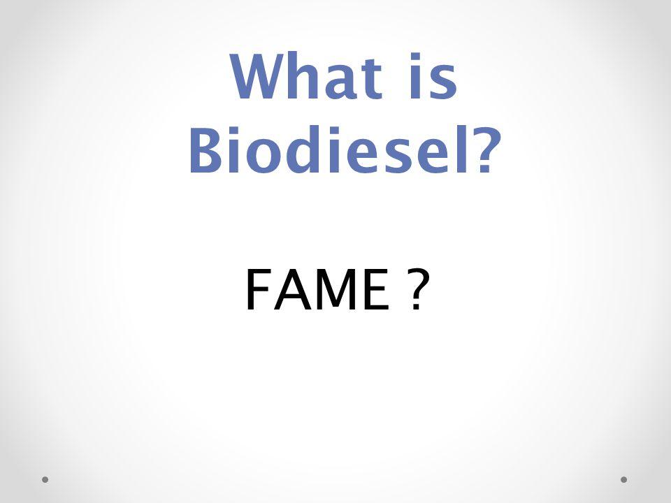 biodiesel john j milledge